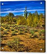 Arizona Landscape Iv Acrylic Print