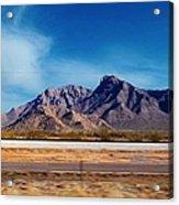 Arizona - On The Fly Acrylic Print