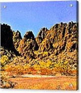 Arizona Panorama Organ Pipe Acrylic Print