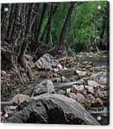 Arizona Riparian Flows Acrylic Print