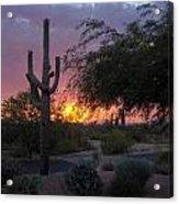 Arizona Sunset Acrylic Print