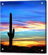 Arizona Sunset Saguaro National Park Acrylic Print