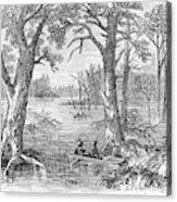 Arkansas Sunken Lands Acrylic Print