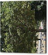 Arlington National Cemetery - 121228 Acrylic Print
