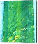 Armstrong Woods Acrylic Print