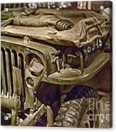 Army Mule  Acrylic Print