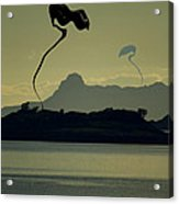 Arrival Acrylic Print by Anthony Bean