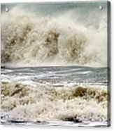 Arrival Of Sandy Acrylic Print