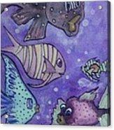 Fish Art Acrylic Print