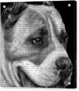 Art In The News 55- Kingston Acrylic Print