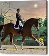 Art Of Dressage Acrylic Print
