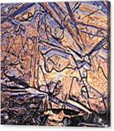 Art Of Ice 2 Acrylic Print