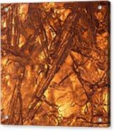 Art Of Ice 4 Acrylic Print