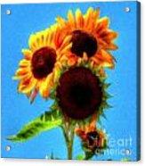 Artful Sunflower Acrylic Print