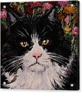 Artie Acrylic Print