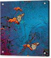 Artistic Butterflies Acrylic Print