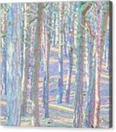 Artistic Trees Acrylic Print