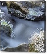 Artistry In Ice 20 Acrylic Print