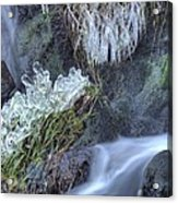 Artistry In Ice 22 Acrylic Print