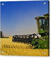 Artists Choice Two Combine Harvesters Acrylic Print
