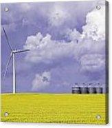Artists Choice Wind Turbine And Canola Acrylic Print