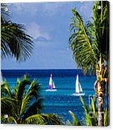 Arubian Sails Acrylic Print