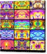 Ascension Wall 201 Acrylic Print