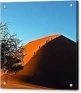 Ascent Of Dune 45 Acrylic Print by Liudmila Di