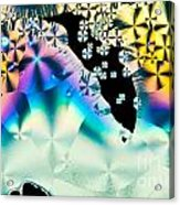 Ascorbic Acid Crystals In Polarized Light Acrylic Print
