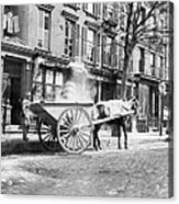 Ash Cart New York City 1896 Acrylic Print by Unknown