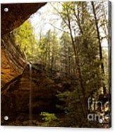 Ash Cave 2 Acrylic Print