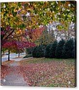 Asheville In The Fall Acrylic Print by Walt  Baker