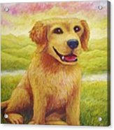 Ashly's Retriever   Acrylic Print