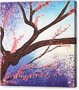 Asian Bloom Triptych 1 Acrylic Print