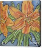 Asiatic Lilies Acrylic Print
