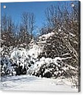 Asleep Under The Snow Acrylic Print