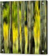 Aspen Abstract Acrylic Print