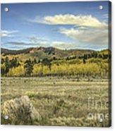 Aspen And Boulder Acrylic Print