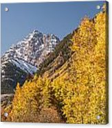 Aspen And Mountains 4 Acrylic Print