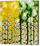 Aspen Colorado 4 Seasons Abstract Acrylic Print