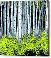 Aspen II Acrylic Print