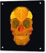Aspen Leaf Skull 2 Black Acrylic Print