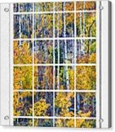 Aspen Tree Magic Cottonwood Pass White Window Portrait View Acrylic Print by James BO  Insogna