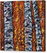 White Trees  Original Oil Painting  Acrylic Print
