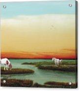 Assateague Island Sunset Acrylic Print