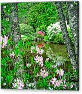 Asticou Azalea Garden Acrylic Print