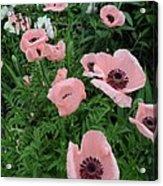 At Bridge Of Flowers  --  Massachusetts  Acrylic Print