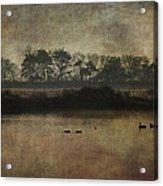 At Dawn Acrylic Print
