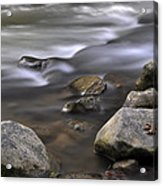 At The Banias River 3 Acrylic Print