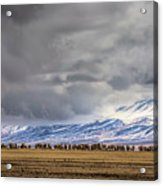 At The Foot Of The Tianshan Mountains Acrylic Print